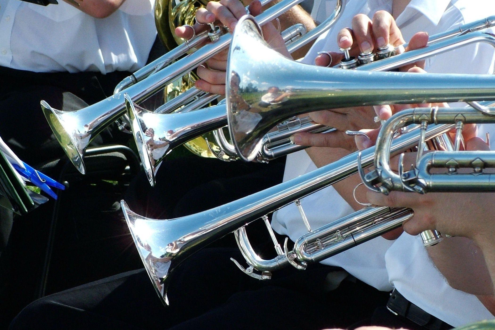 Obrázek Muziky, muziky, Půlhodinka dechové muziky v podání známých kapel…