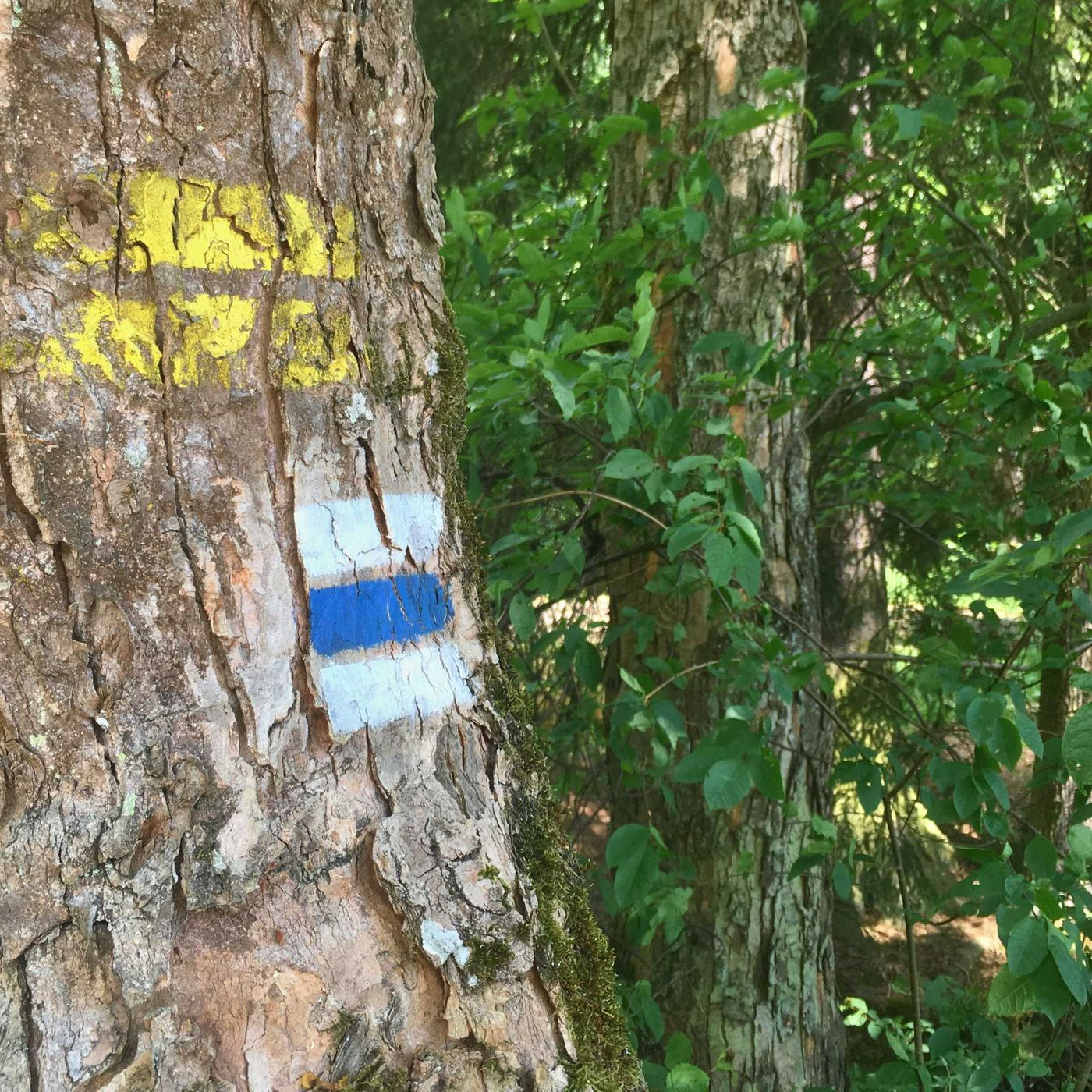 Na zámku ve Žďáře nad Sázavou se dozvíte, čím včely bzučí. Připravte si všechny své smysly